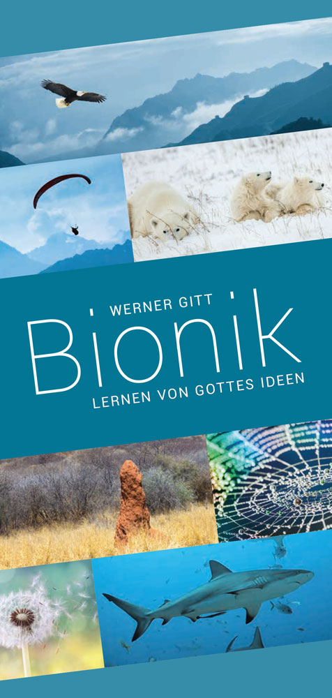 Bionik: Lernen von Gottes Ideen