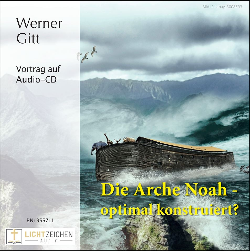 Die Arche Noah – optimal konstruiert? (Audio-CD)